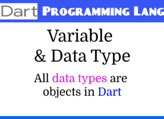Dart Programming Language - Variables in Dart