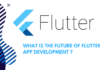 What is the Future of flutter development
