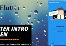 Flutter Introduction Screen a welcome screen for new user