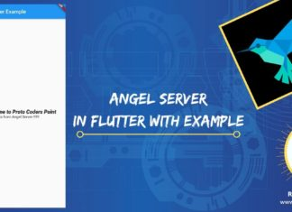 Angel dart server in flutter application example