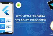 Flutter mobile app development for cross platform