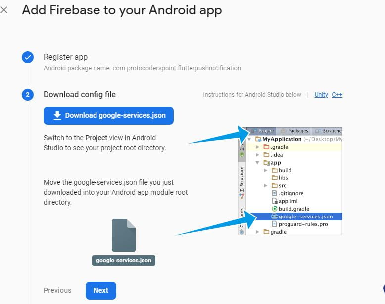 download firebase project config json file