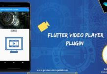 flutter video player widget plugin