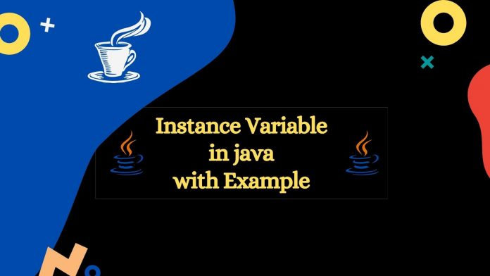 instance variable in java with example